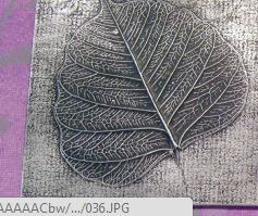 leaf relief