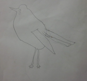 bird in pencil