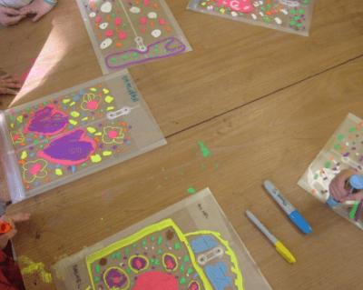 coloring folders 1