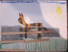 animal crafts with horse behind fence