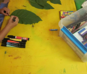 markers and leaves