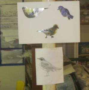birds to draw